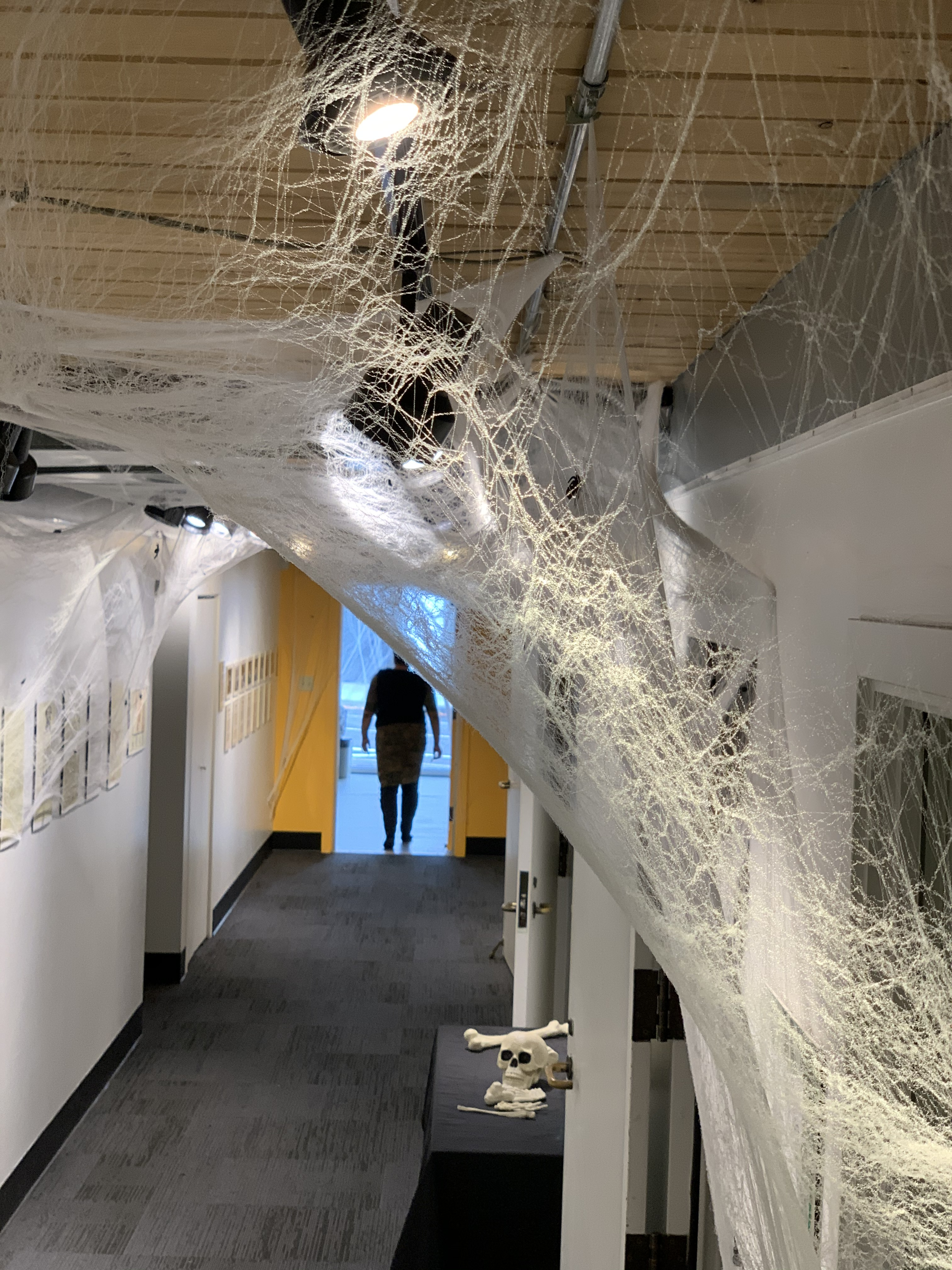 A multitude of artificial cobwebs adorn the hallways at Jack Straw, providing a spooky and tactile corridor. .