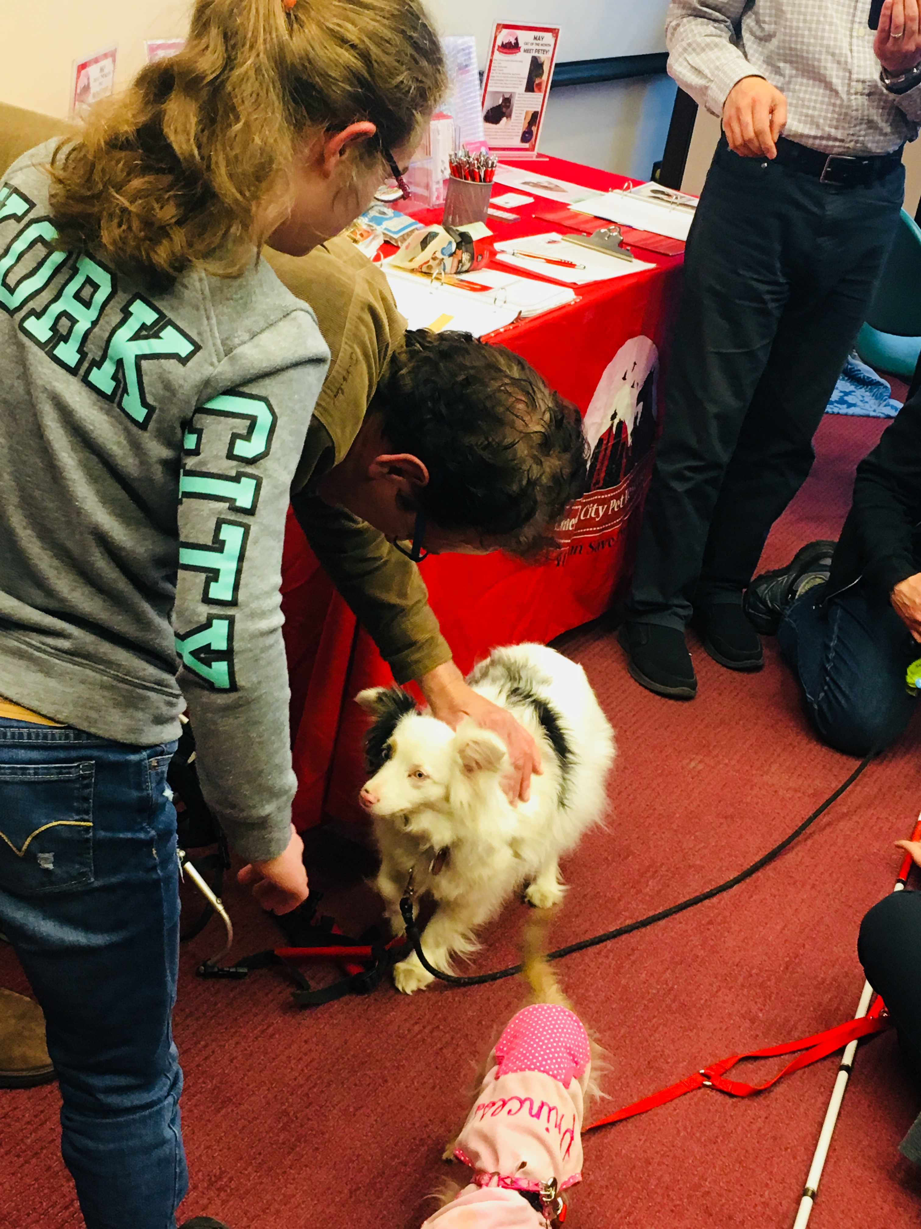 Youth patrons enjoyed playing with a double merle Australian Shepherd, a deaf dog from Emerald City Pet Rescue at the Special Pet Meet & Greet Event on May 5, 2018.